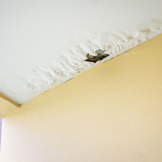 water damage to ceiling from pooling water from a roof leak